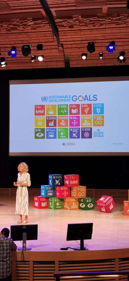 Wikimania2019 Sustainable Goals KM 190816